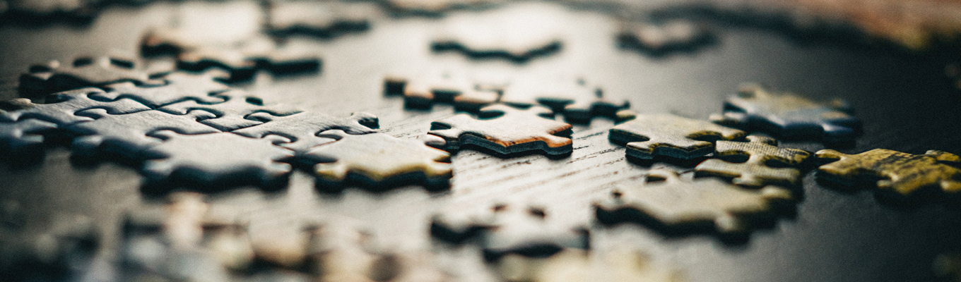 10 Fun Facts about Jigsaws by Rosemary and Richard Christophers